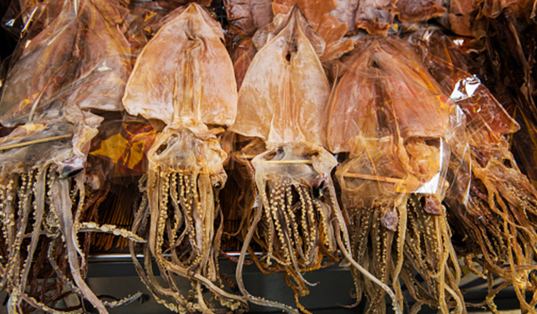 Dried_squid_-_152410.jpg - 398.30 kB